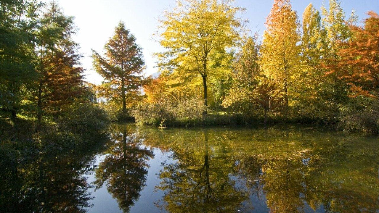 Luoghi da visitare: Giardini di Sissi a Merano, laghetto - dolomiti.it