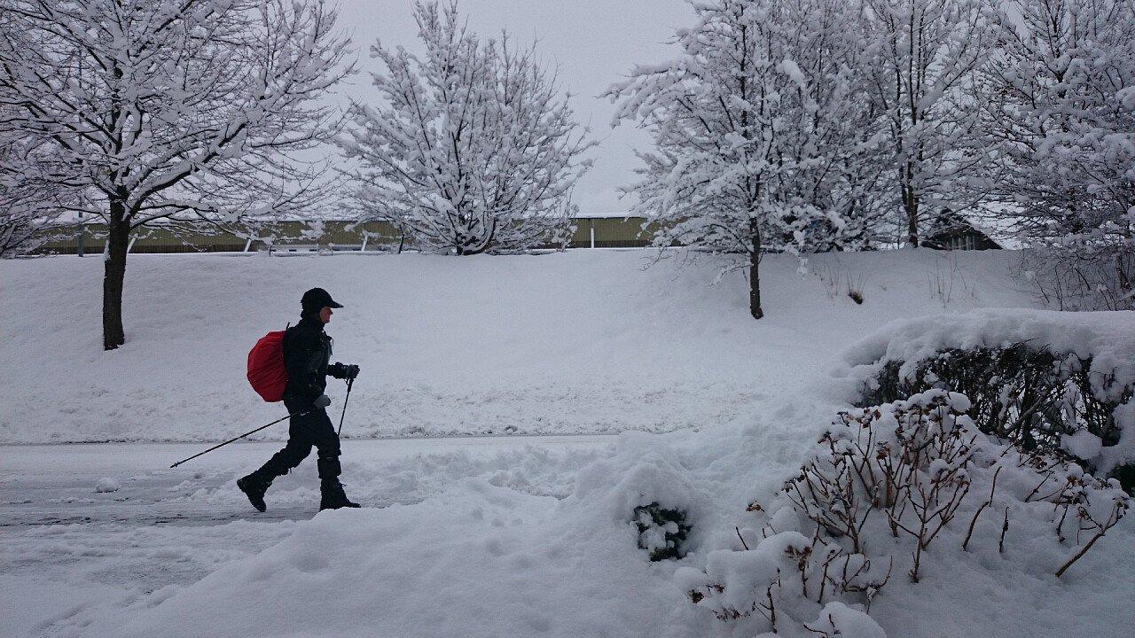 Nordic walking sulla neve tra le Dolomiti UNESCO