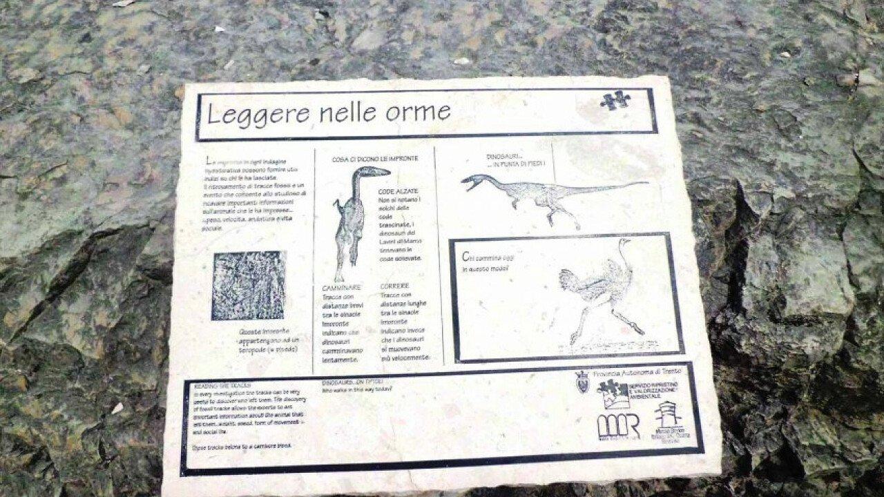 Pannello interattivo del Museo Orme dei dinosauri Rovereto