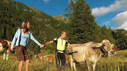 Lo Zecchino d'Oro in Val di Fiemme - cover