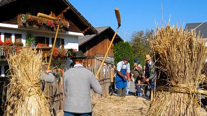 Festa del contadino a Tiso - cover