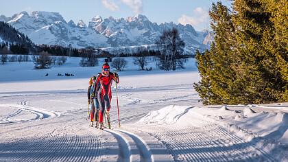 Viote Monte Bondone Nordic Ski Marathon - cover