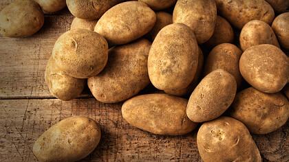 Festa della patata e dei sapori d'autunno - cover