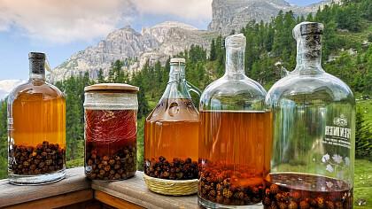 Visita guidata della distilleria olio di pino mugo Eschgfeller - cover