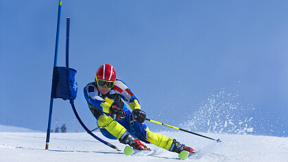 FIS Master Cup - cover