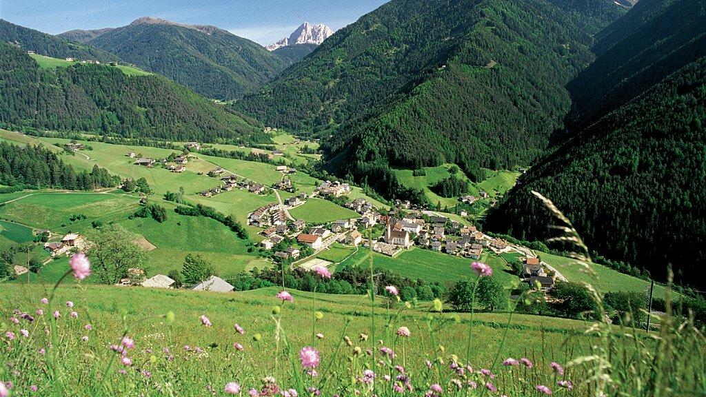 Alle cime dell'Alpe di Luson - cover