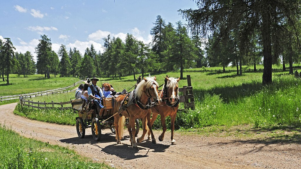Percorsi di Trekking a cavallo: Lago di S. Croce  - cover