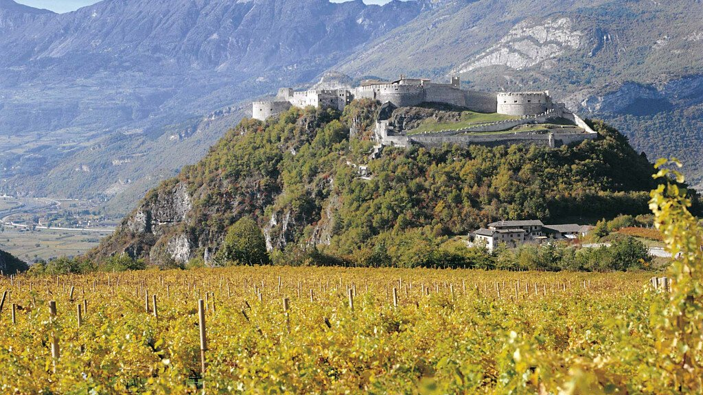 Strada del Vino e dei Sapori della Vallagarina - cover