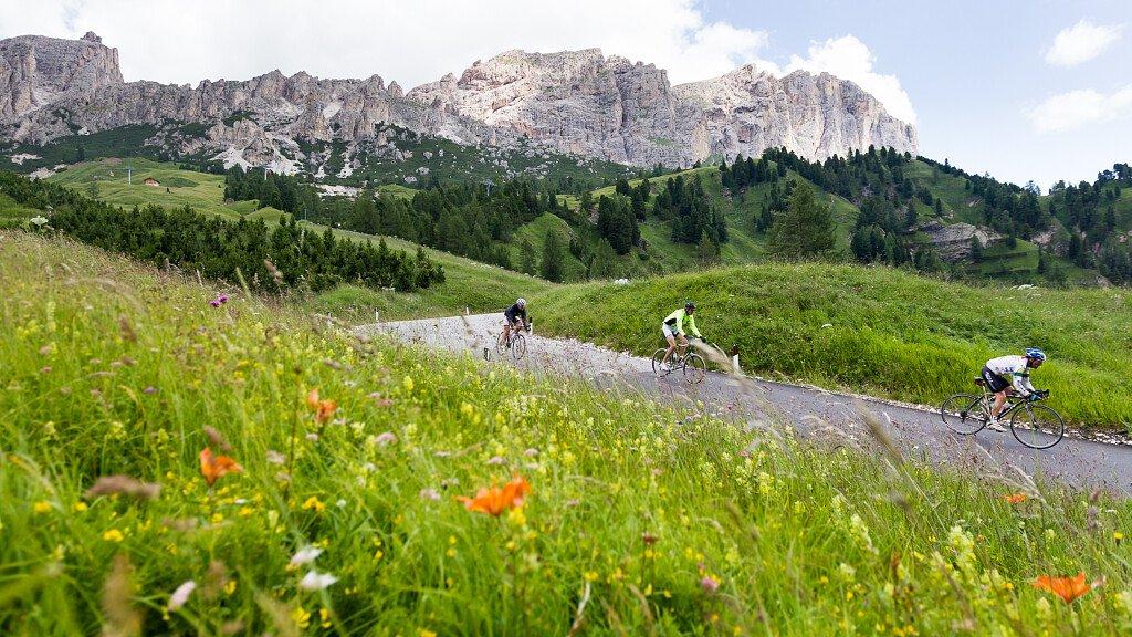 Tour guidato in bici - Passo delle Erbe - cover