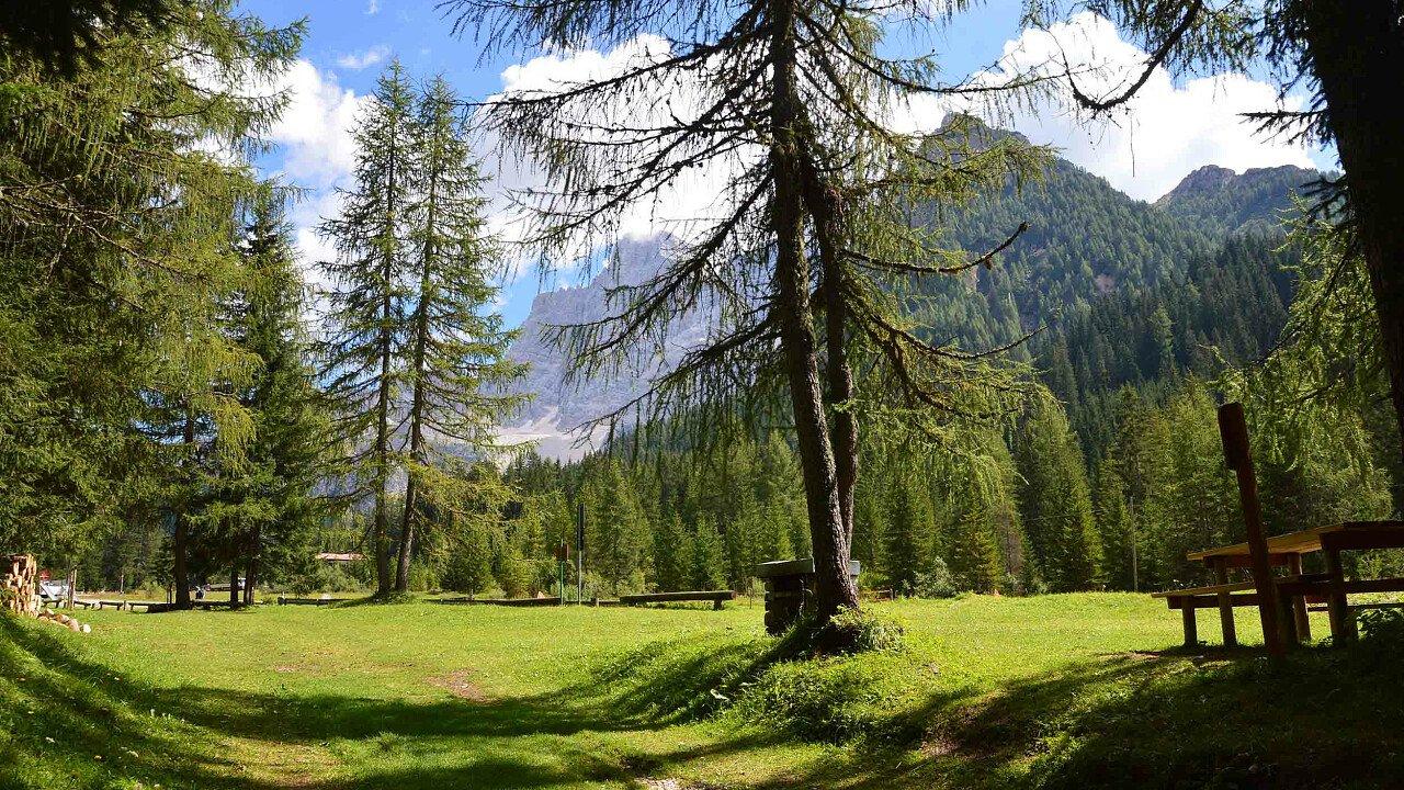 I boschi a Selva di Cadore nelle Dolomiti UNESCO del Bellunese