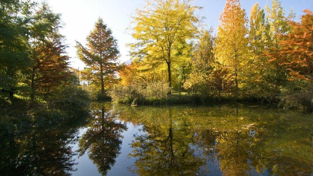 Esplode l'autunno ai Giardini di Castel Trauttmansdorff - cover