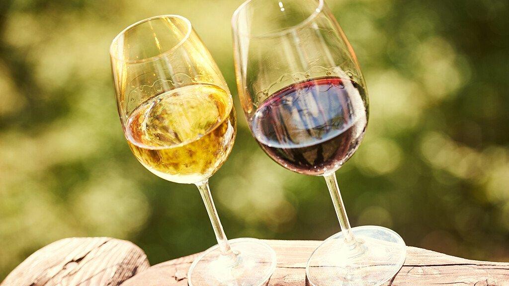 Dolomiti.it al Vinitaly con i vini di San Michele Appiano - cover