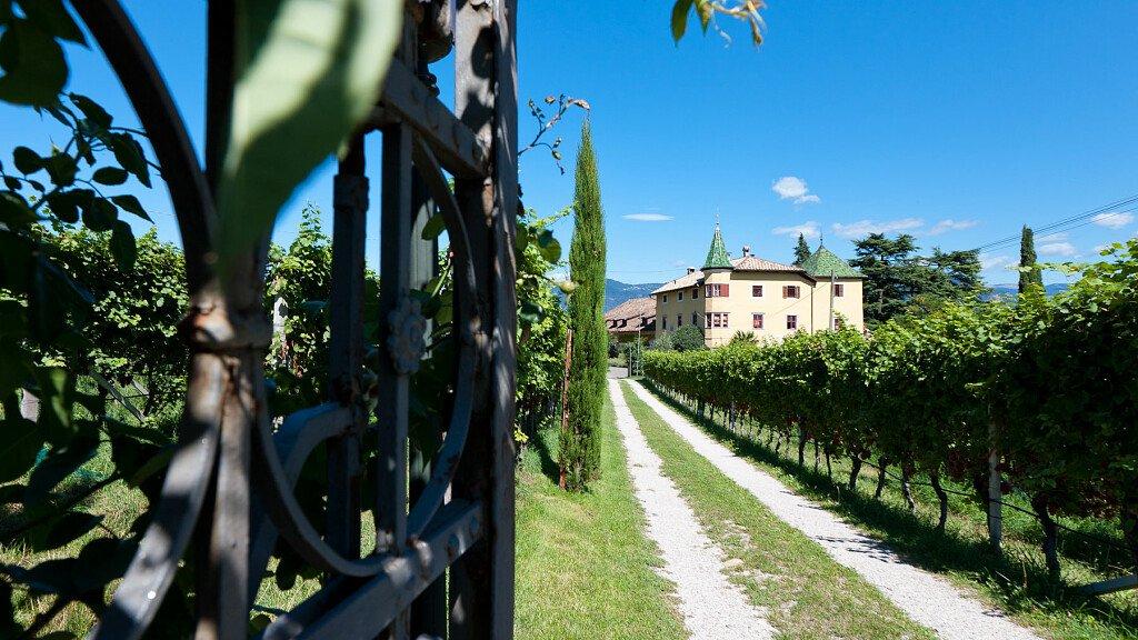 Wine Time alla cantina di San Michele Appiano - cover
