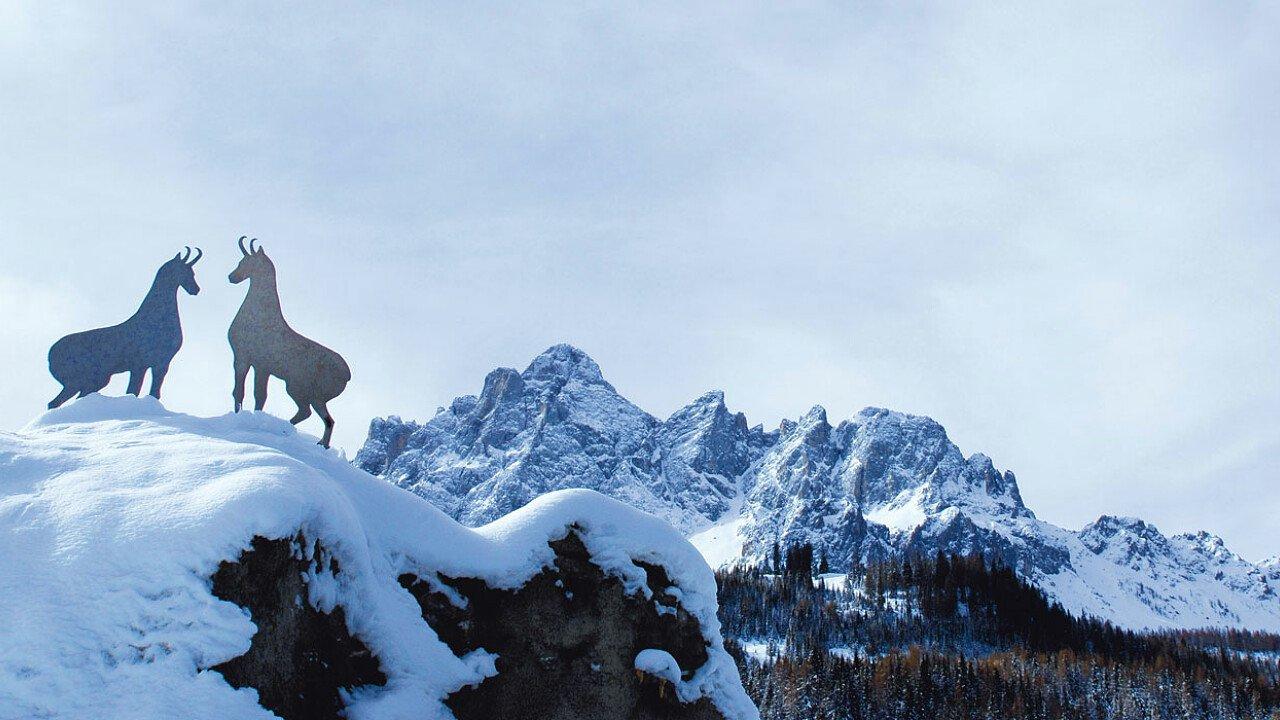 La Meridiana di Sesto - Dolomiti UNESCO