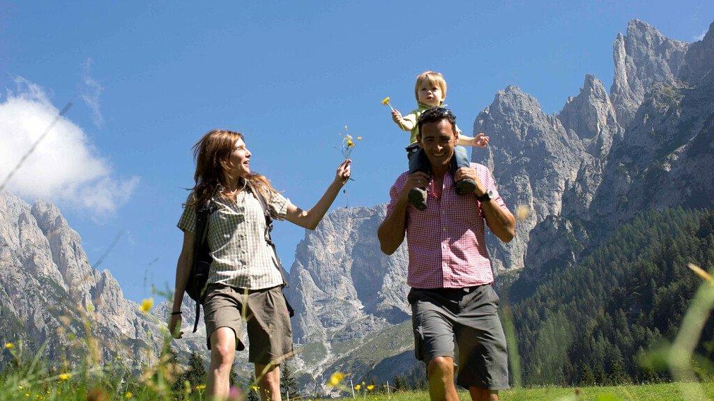 San Martino di Castrozza: Agility Forest seasonal opening - cover