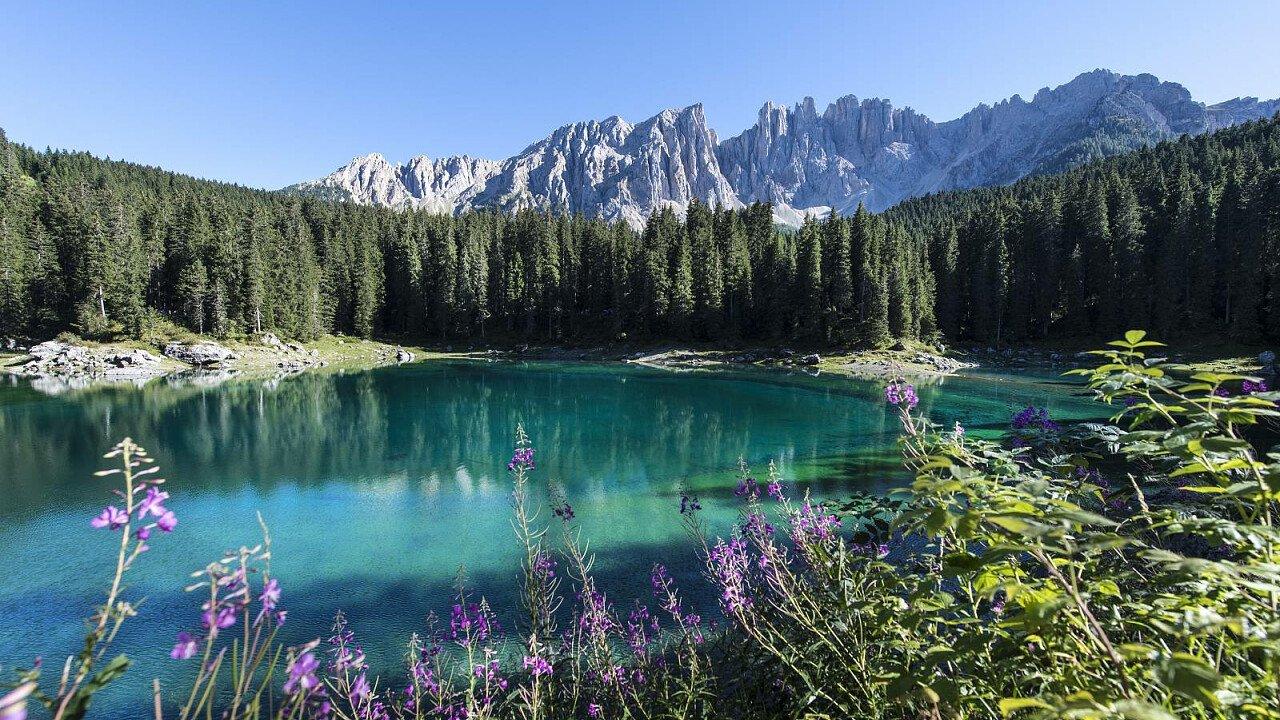 Lago di Carezza in estate - Val d'Ega in Alto Adige