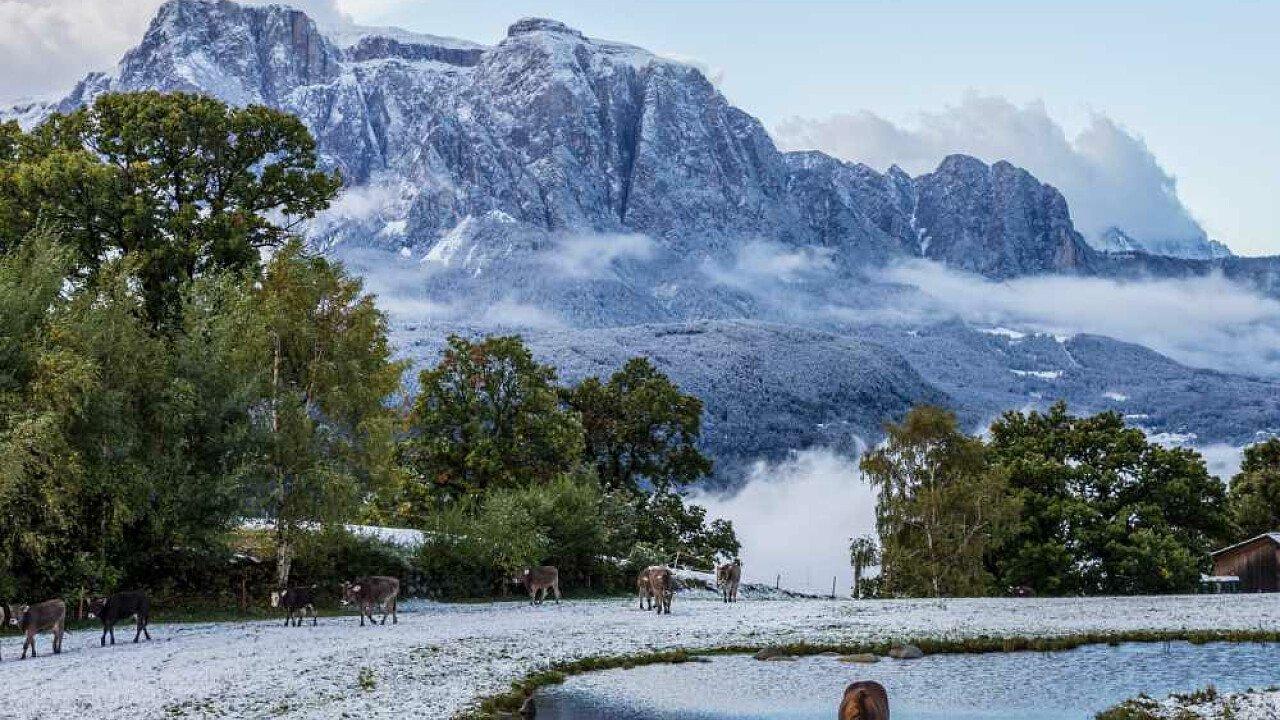 Inverno tra la natura di Barbiano in Valle Isarco
