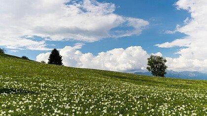 Landschaft_Lentiai_shutterstock