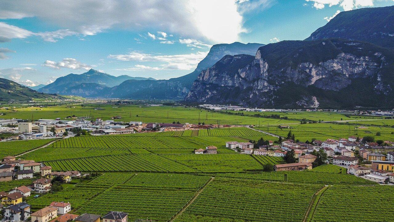 Blick auf das Dorf Mezzocorona
