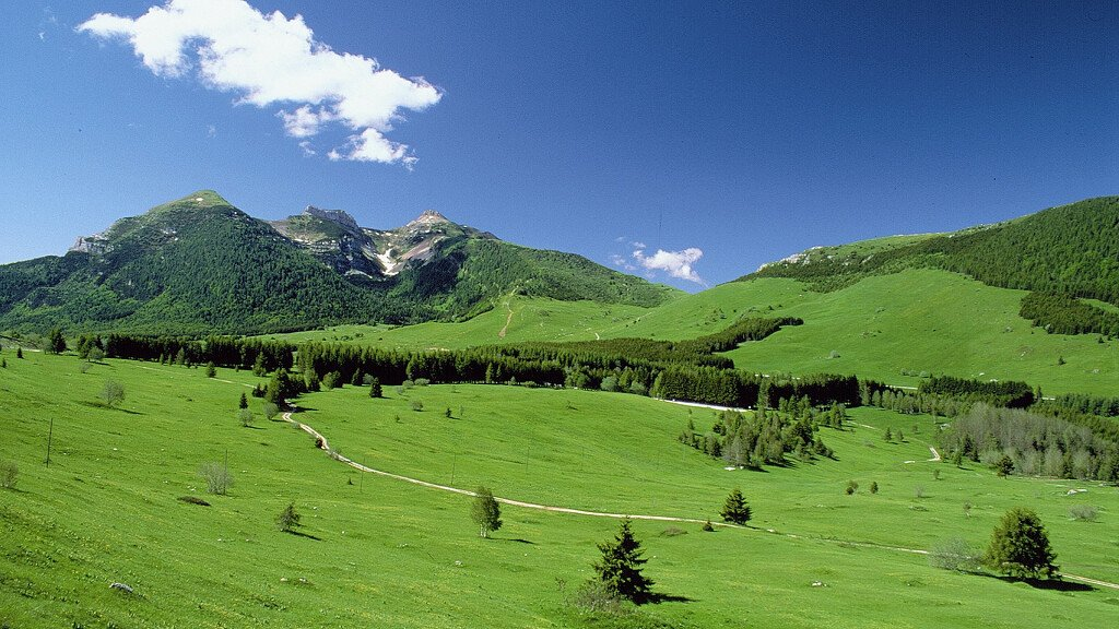 Monte Bondone: nature and sport holidays on the Alps of Trento - cover