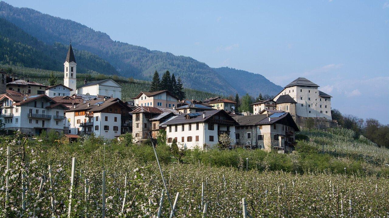 Apple orchards around Castel Caldes