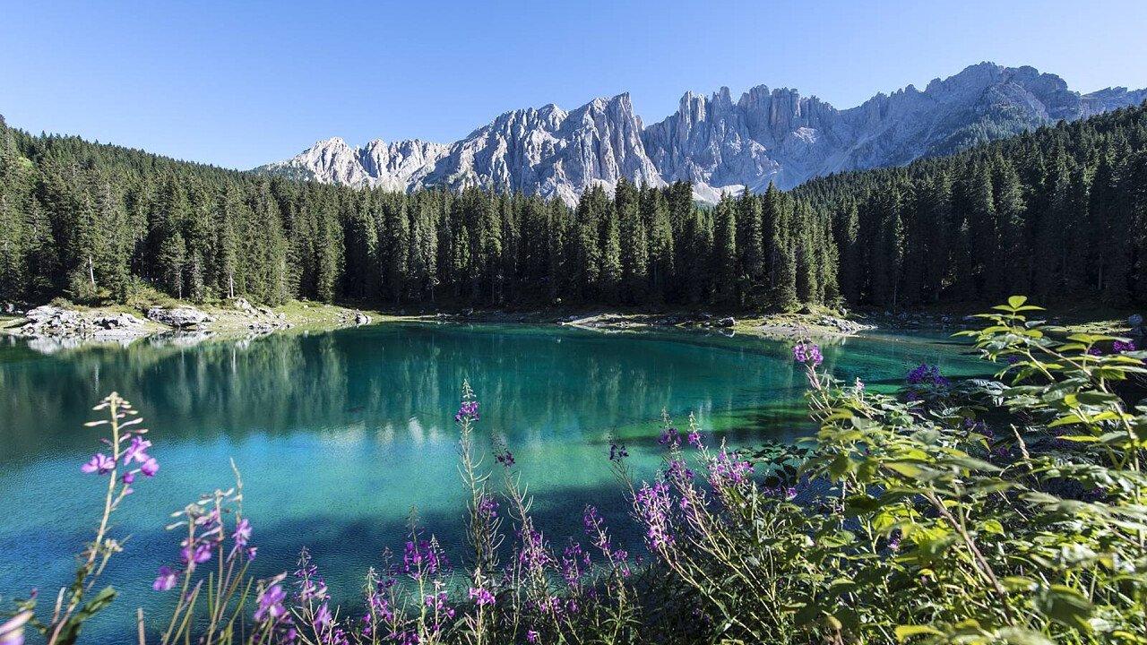 Summer Carezza Lake