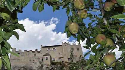 Apple orchards at Castelbello-Ciardes Castle