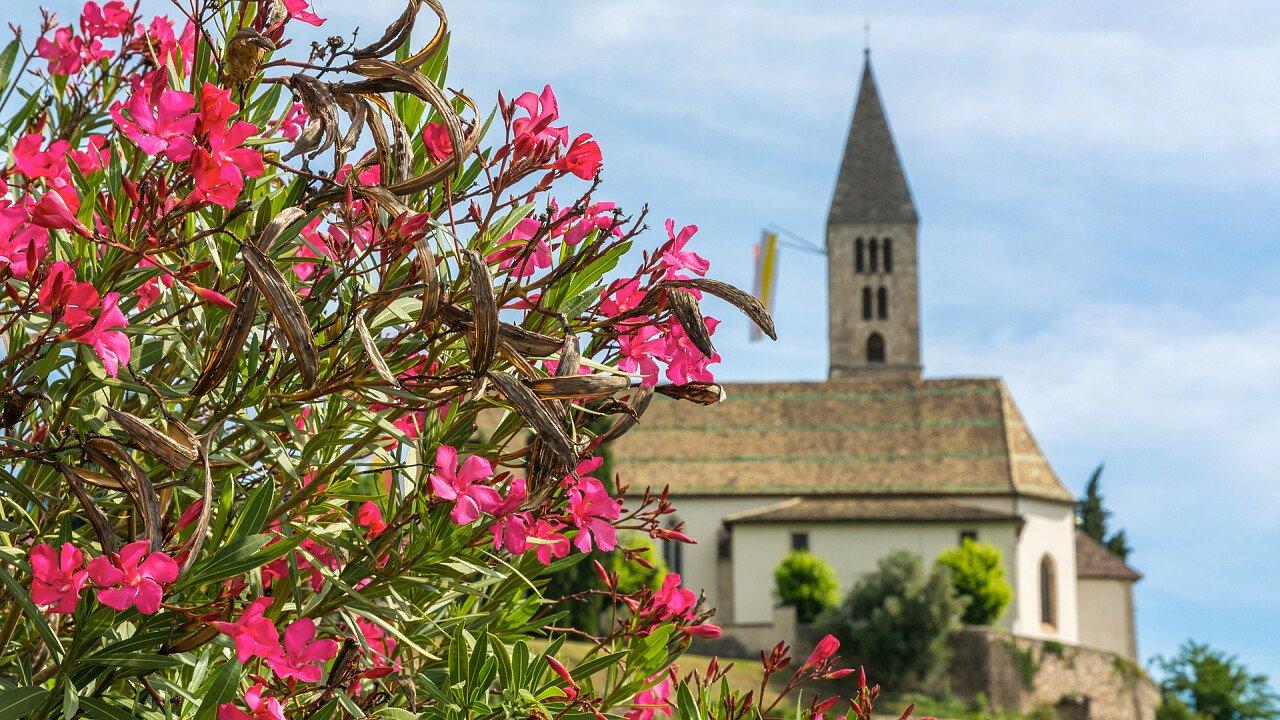 fiori_chiesa_di_cortaccia_sulla_strada_del_vino_shutterstock