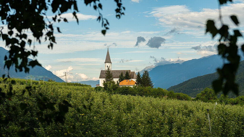 Val Venosta/Val Senales: Waalwege, mountain bike and ski - cover