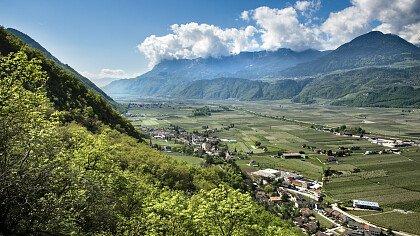 estate_postal_associazione_turistica_lana_e_dintorni_helmut_rier