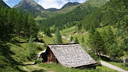 natura_estate_terento_touristinfo_terento