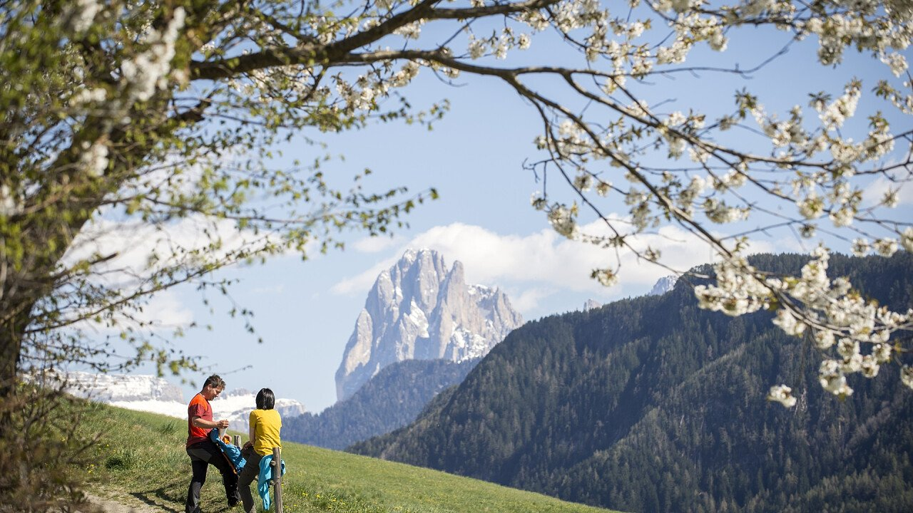 Bike tour in spring in Laion