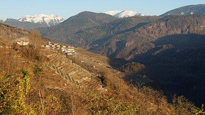 autunno_pine_valle_di_cembra_depositphotos