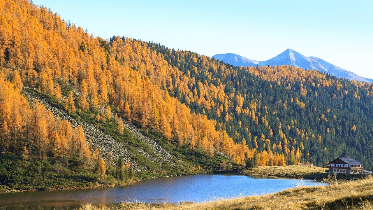 autunno_laghetto_siror_dreamstime_davide_guidolin