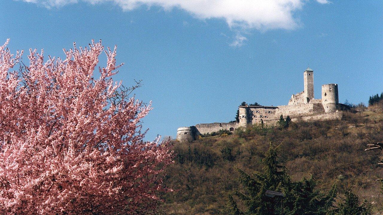 castello_telvana_borgo_valsugana_apt_valsugana_trintinaglia