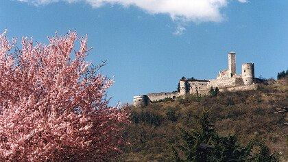 torrente_case_montagna_localita_grigno_borgo_valsugana_apt_valsugana