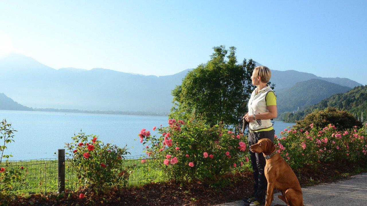 Vacanze con il cane al lago in Valsugana - Trentino