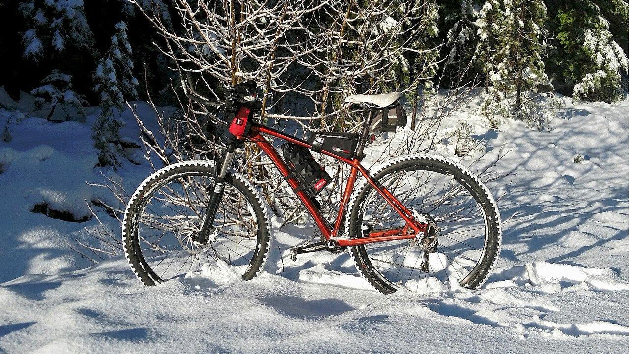 Bici sulla neve nel bosco
