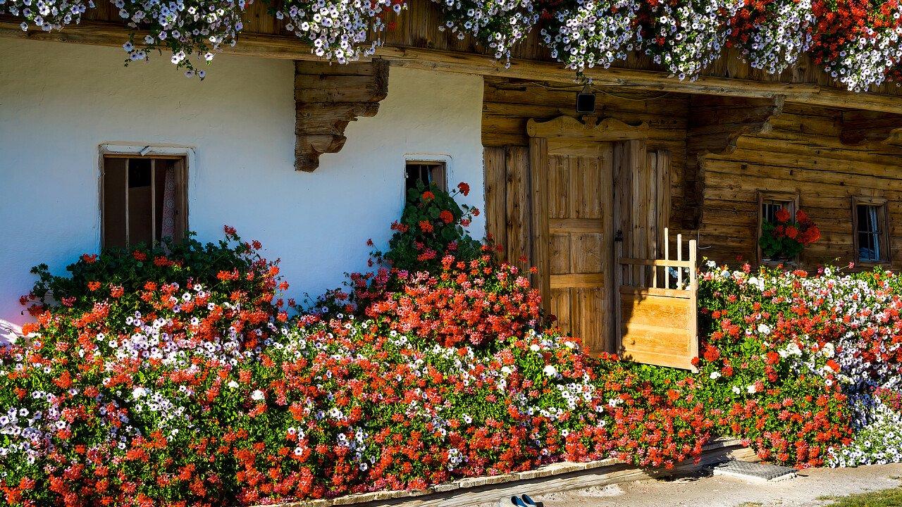 balcone_pieno_di_fiori_tradizioni_locali_shutterstock