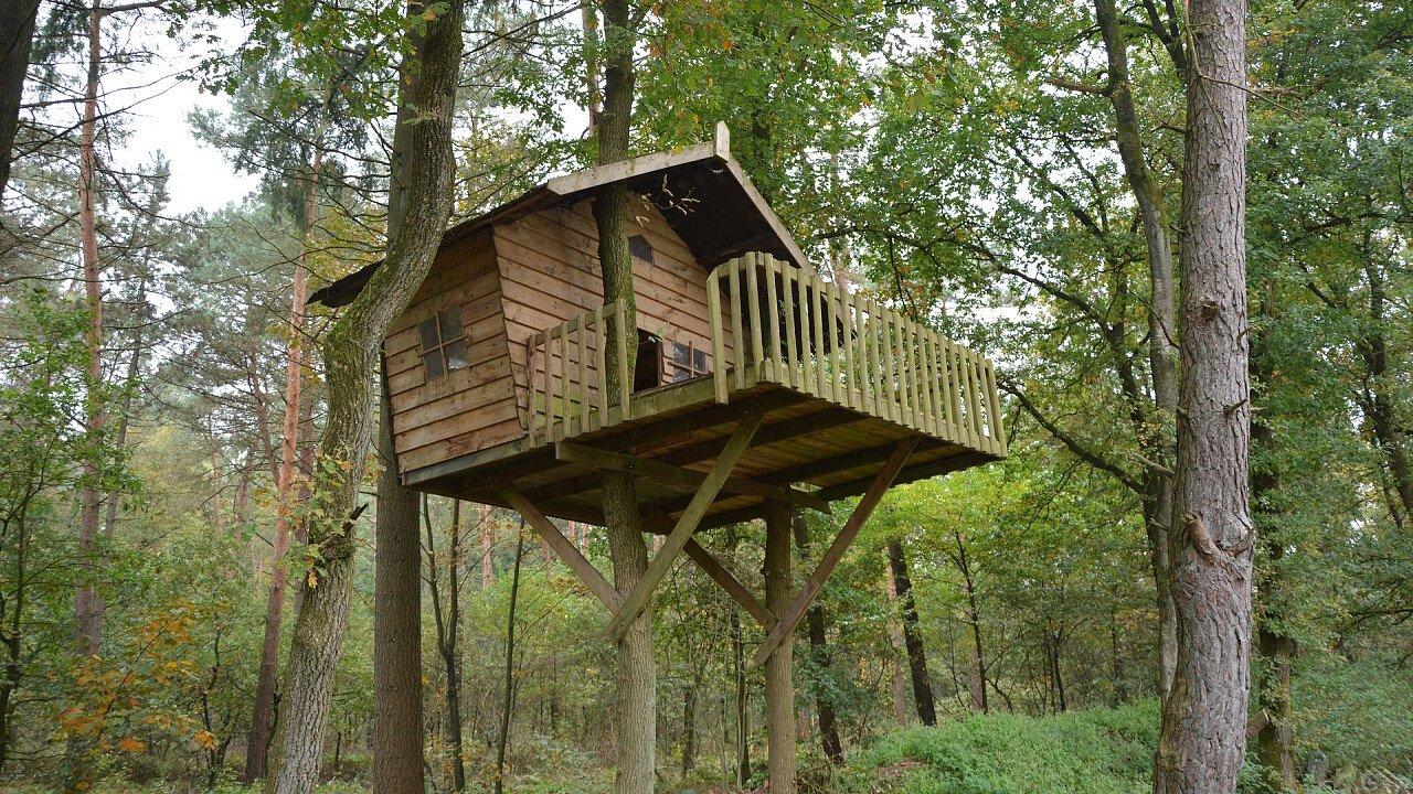 casa_sull_albero_architettura_pixabay_gerdahuiskamp