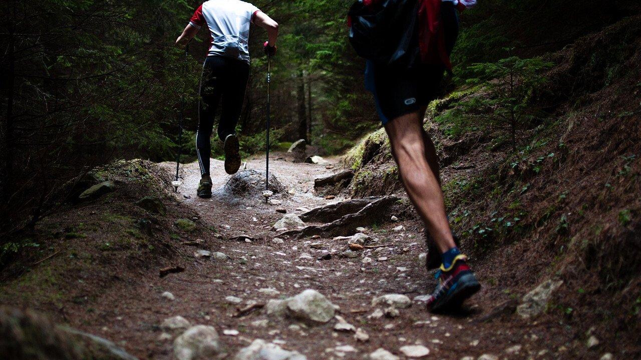 persone_sentiero_corsa_in_montagna_pixabay_free-photos