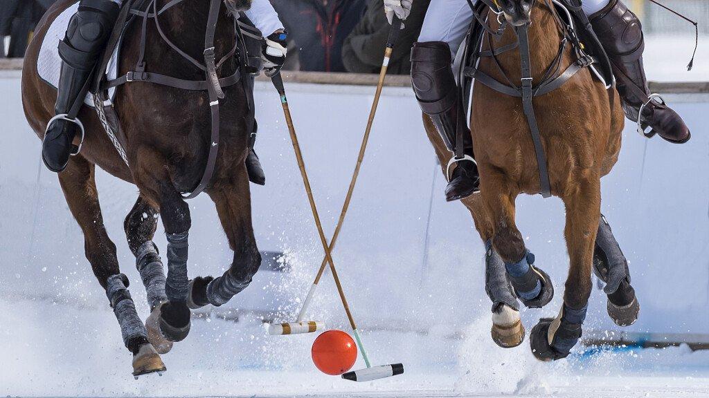 Snow Polo in den Dolomiten - cover