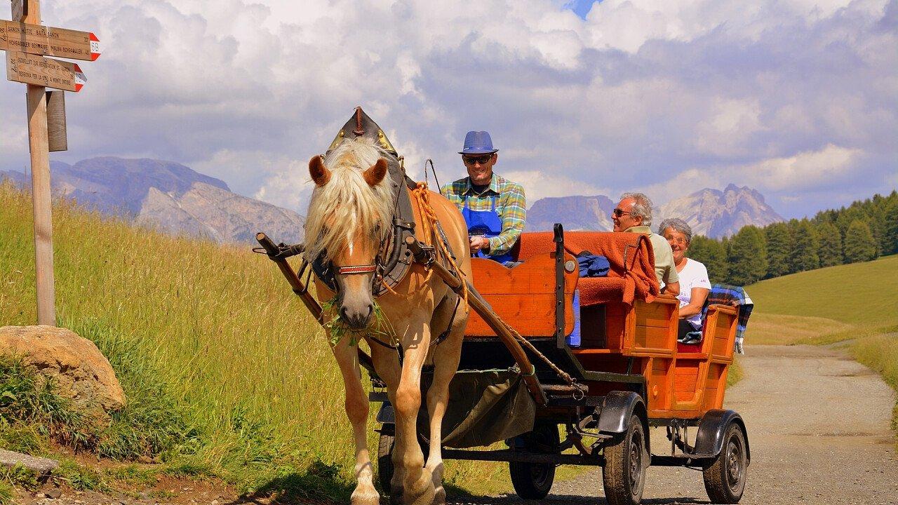 estate_alpe_di_siusi_gita_carrozza_cavalli_pixabay_pcdazero