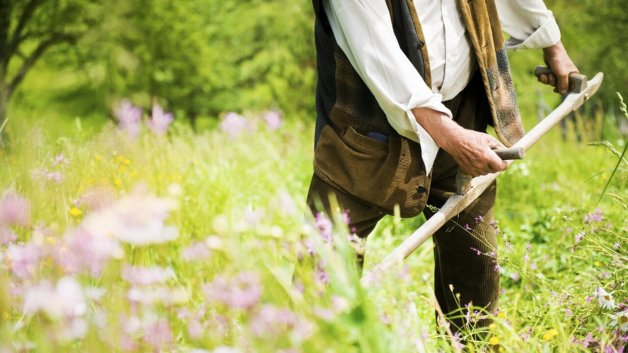 Farmer ploughing the fields