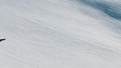 Sciare a Forcella Aurine